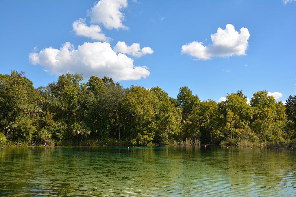 Alexander Springs Florida Hikes