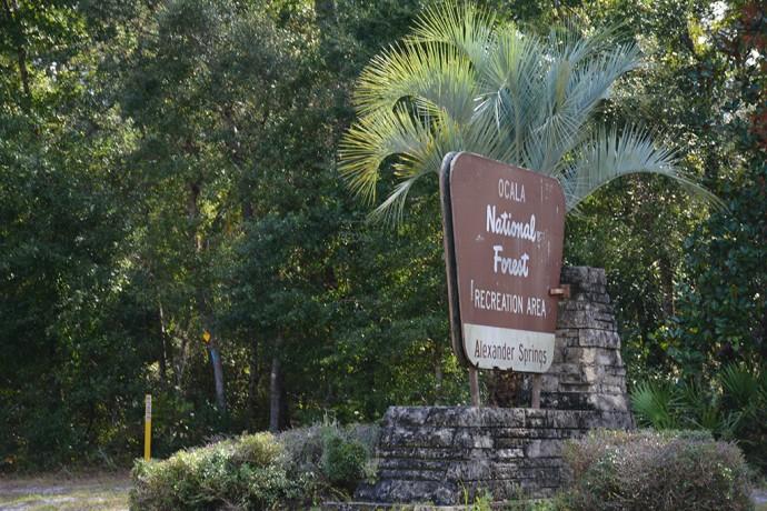 Blue-blazed trail on far side of CR 445 near entrance sign