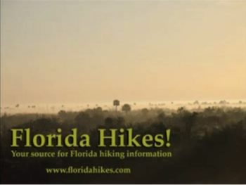 Old Florida Hikes YouTube