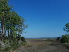 Dickerson Bay