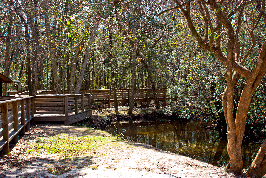 Boardwalk at Laird Park