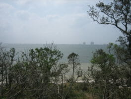 Naval Live Oaks to add wheelchair-accessible trail