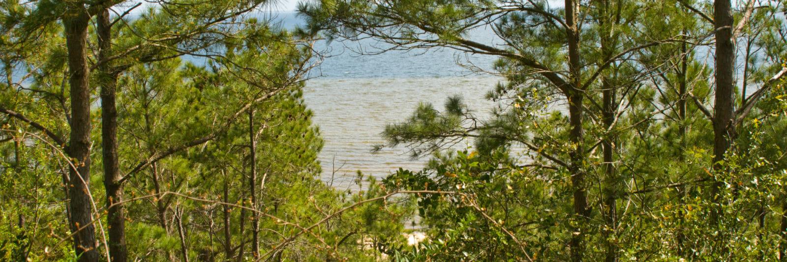 Pensacola Bay Bluffs view