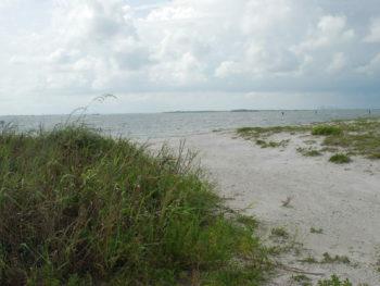 Apollo Beach Nature Preserve