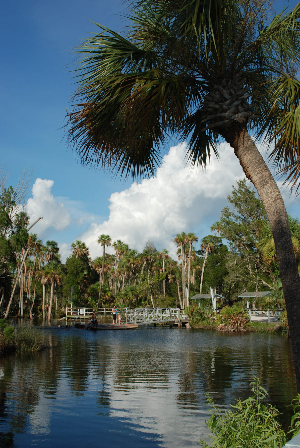 There is no beach at Hernando Beach except a man-made one along Jenkins Creek. But this coastal community offers paddling, swimming, hiking, and biking along its trails.