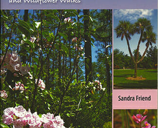 Exploring Florida's Botanical Wonders