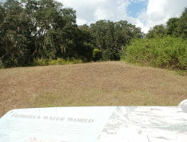 In search of Florida's ancient past