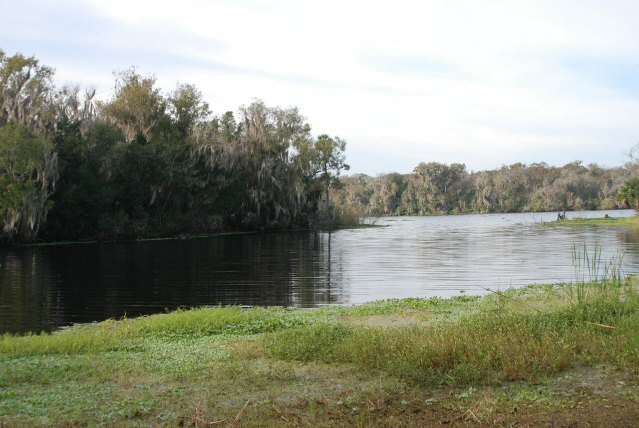 St Johns River at Bluffton