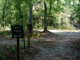 Silver Springs Conservation Area now open