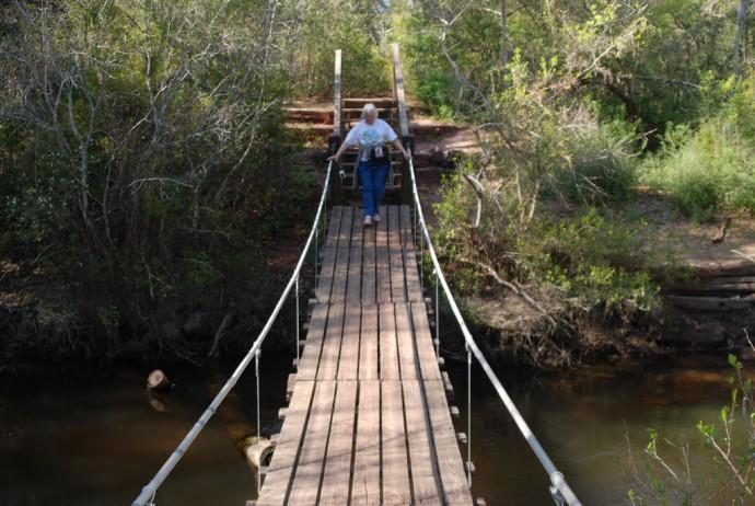 Swinging bridge at Arcadia Mill