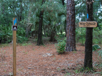 New Wiley Dykes Sr. campsite
