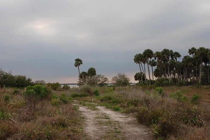Maritime Hammock Sanctuary