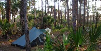 Tent at Kitching Creek
