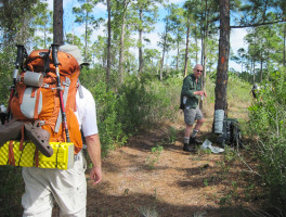 Hiking Basics for Florida