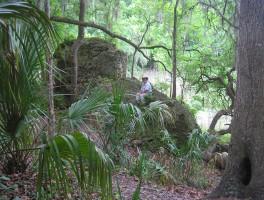 Florida's Habitats