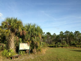 New trails at CREW Marsh