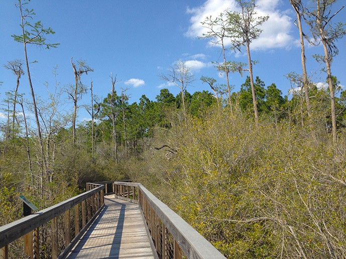 Conservation Park, Panama City Beach