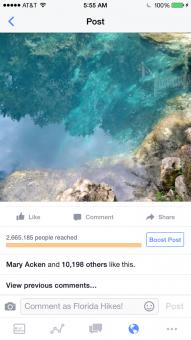 Royal Springs viral post