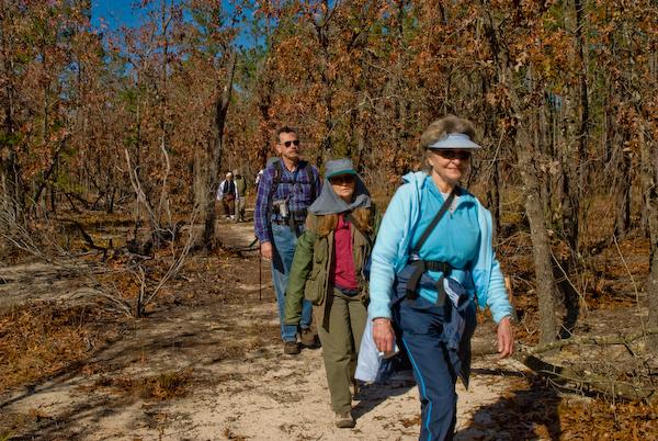 Kerr Island hike