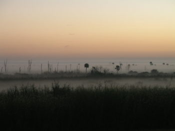 Misty morning on Lake Okeechobee