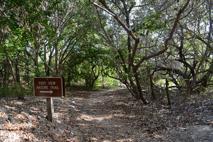 Fort View Trail
