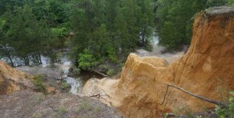 Florida Trail, Juniper Creek
