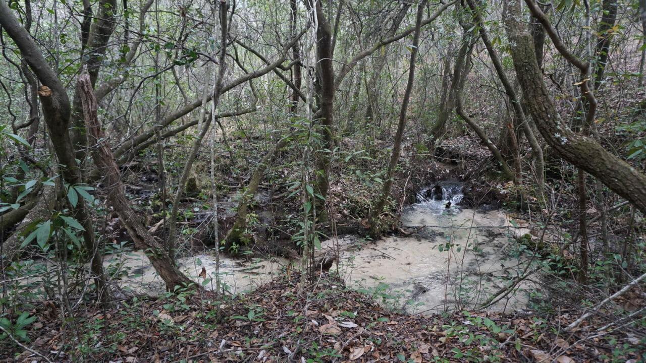 Eglin Bull campsite water