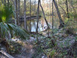 Ponce De Leon Springs Nature Trails