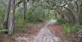 Johnson Pond Trail
