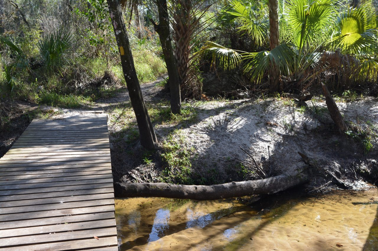 Little Manatee River Trail | Florida Hikes!