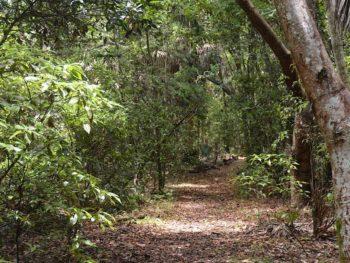 Arch Creek Park