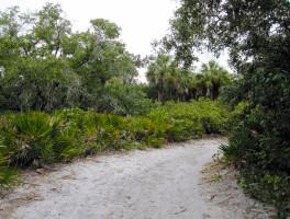 Arrowhead Nature Trail