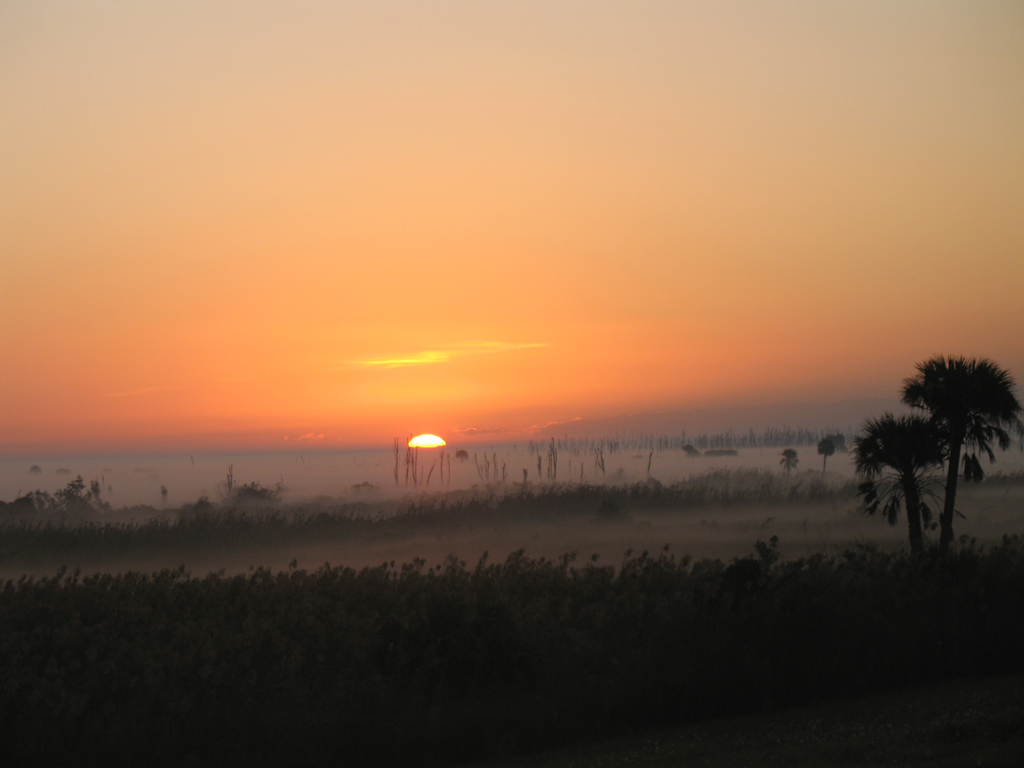 Sunrise and fog at Moore Haven