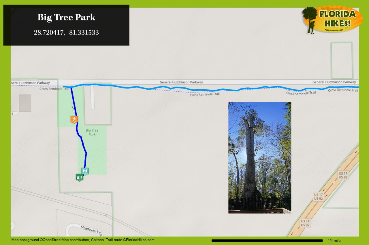 Map of Big Tree Park