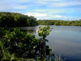 Black Island Trail