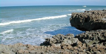 Blowing Rocks Preserve