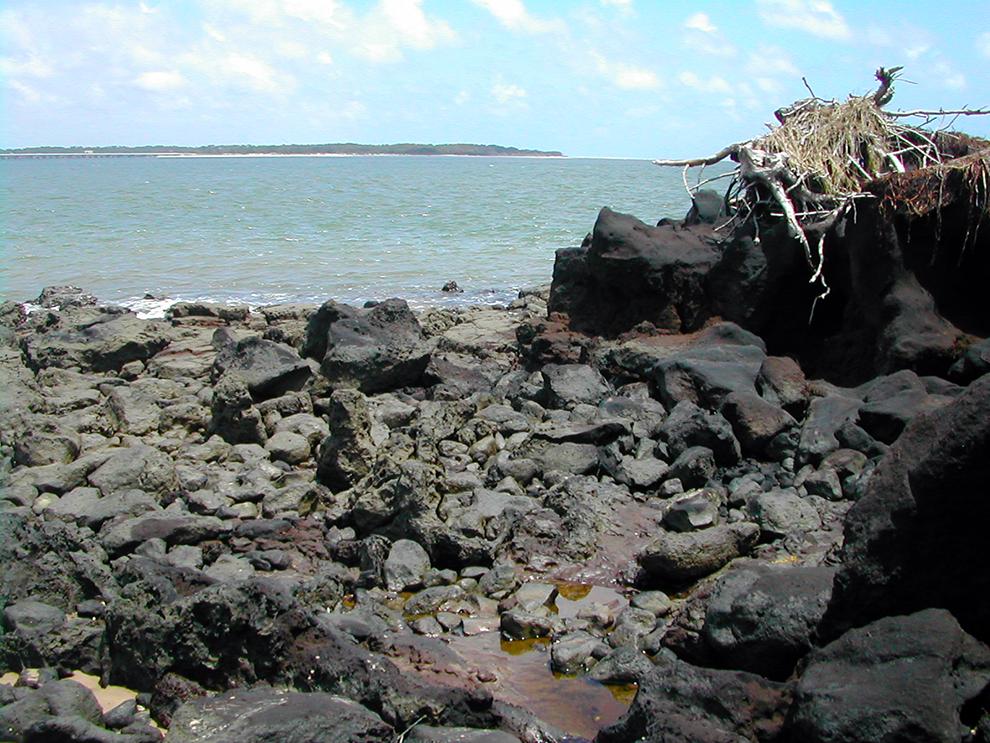 Bluffs Beach Walk