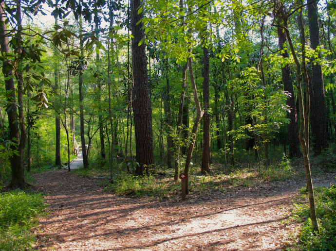 Butler Mill Trail