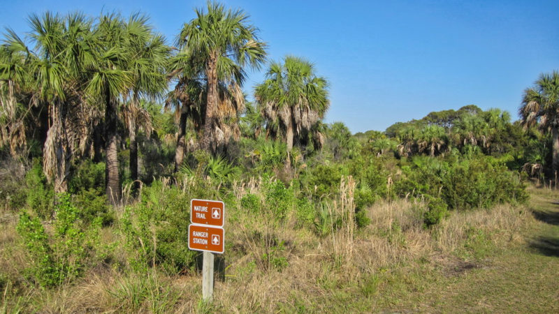 Caladesi Island Shortcut Trail