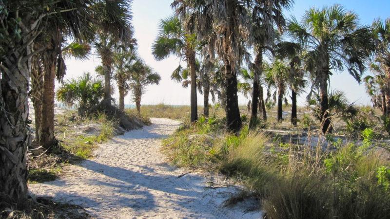 Caladesi Island Beach Trail