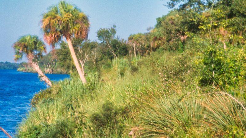 Caloosahatchee River Overlook