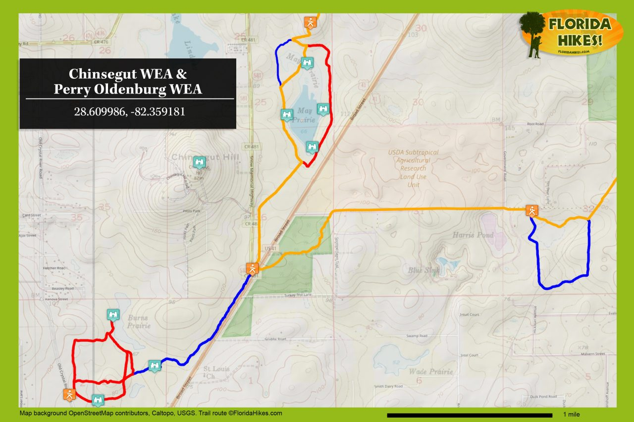 Chinsegut WEA trail map