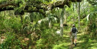 Citrus Hiking Trail