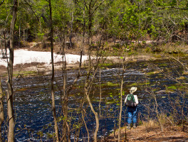 How to hike inn-to-inn on the Florida Trail