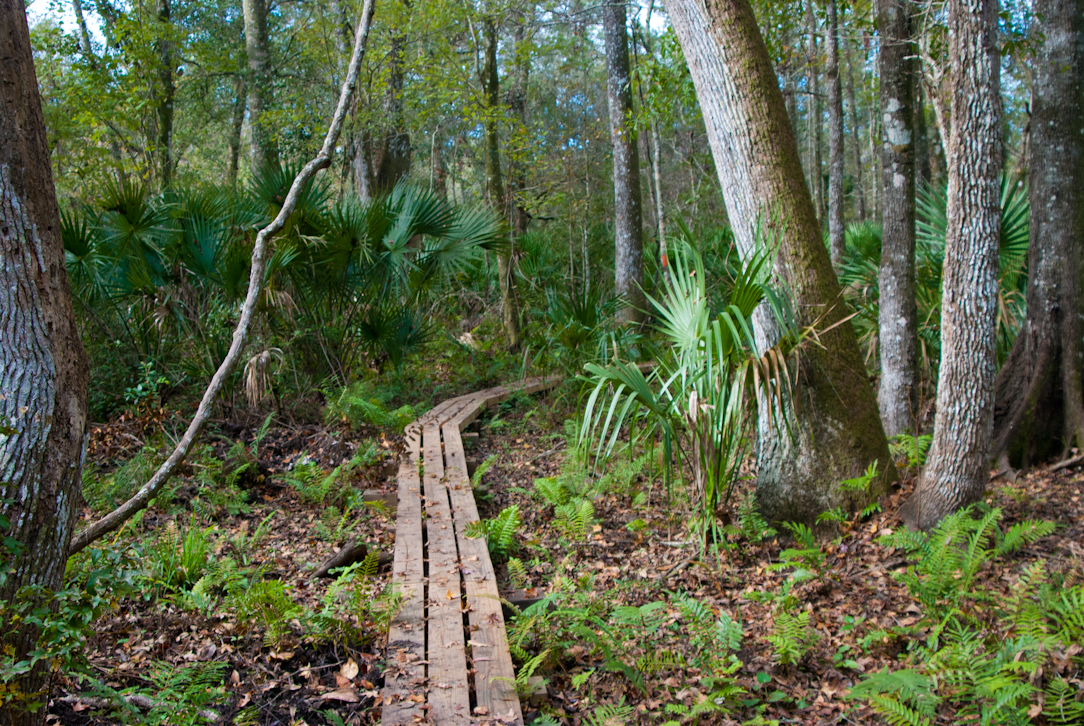 fivestar trails orlando your guide to the areas most beautiful hikes english edition