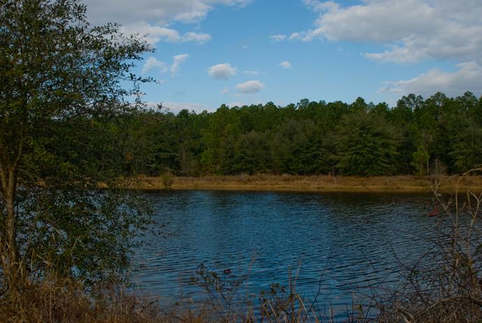 Cross Florida Barge Canal segment near Buckman Lock