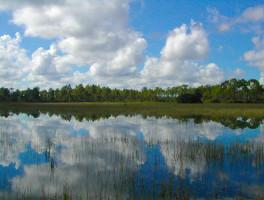 Florida Trail, Ocean to Lake: Corbett WMA