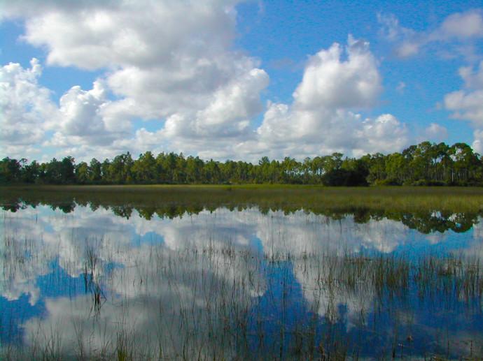 Florida Trail, Corbett WMA