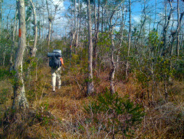 Florida Trail, Ocean to Lake: DuPuis to Corbett