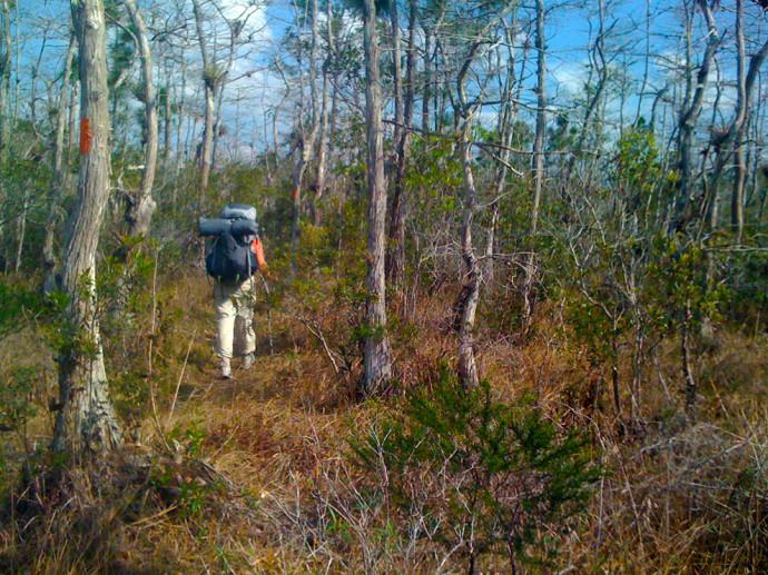 Florida Trail, DuPuis to Corbett
